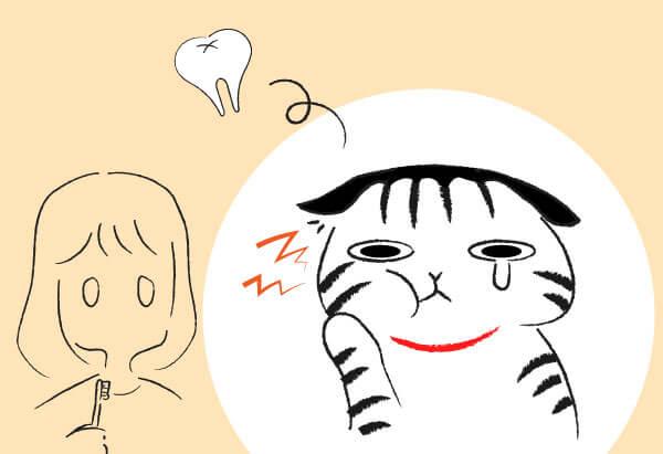 猫の歯石除去